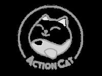 action-cat-grey2